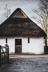 白壁藁葺き屋根の家
