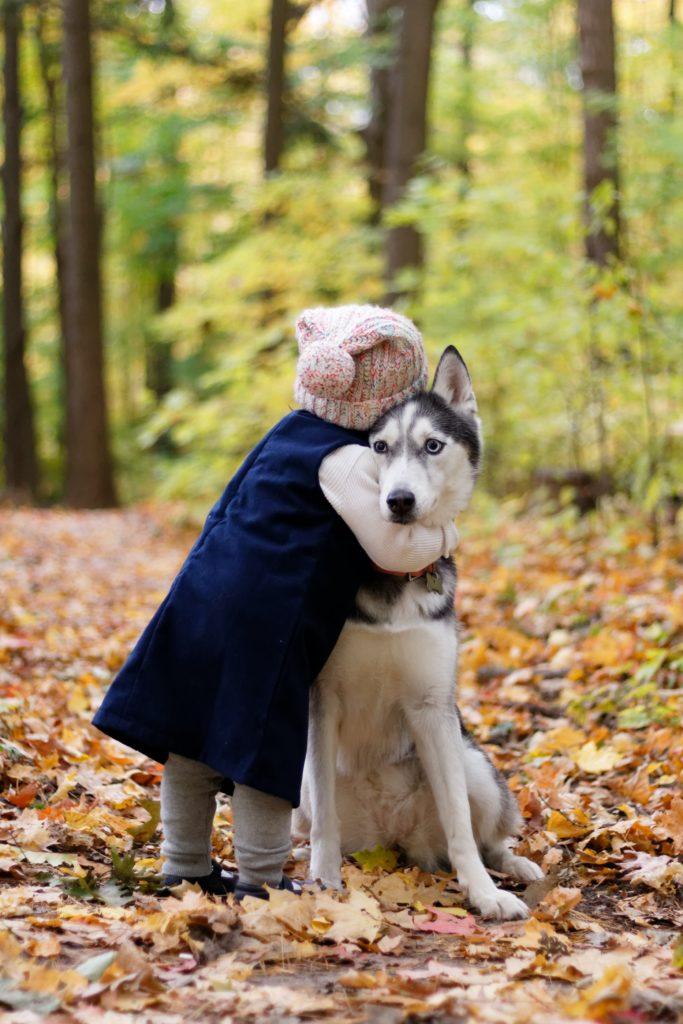 ハスキー犬をハグするニット帽を被った子供の写真