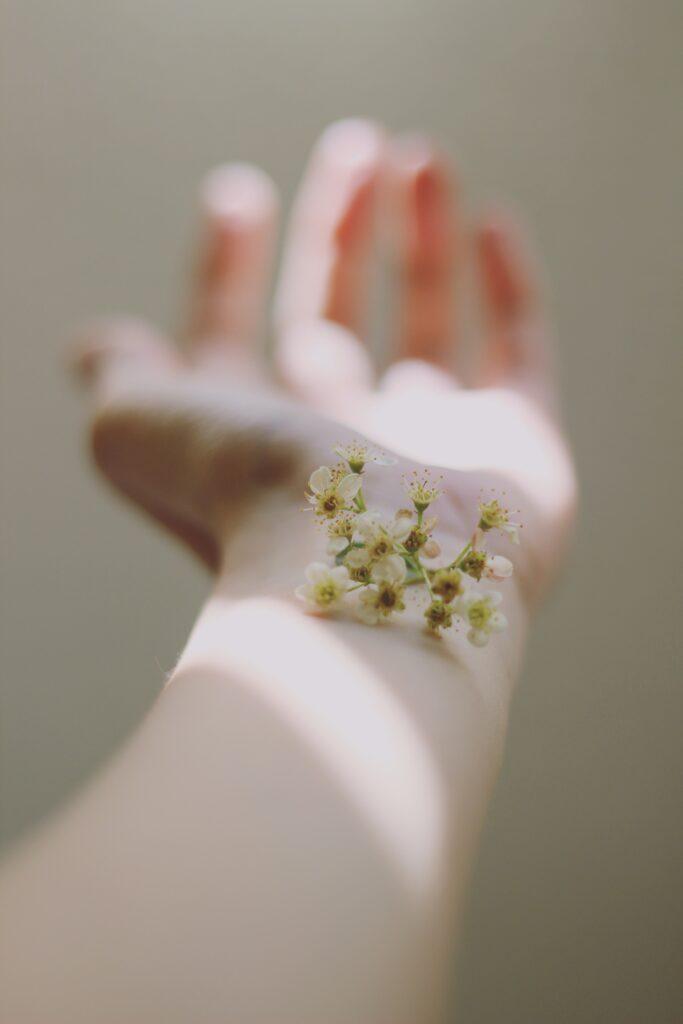 腕の上に花が咲いている写真