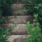 緑に囲まれた石の階段